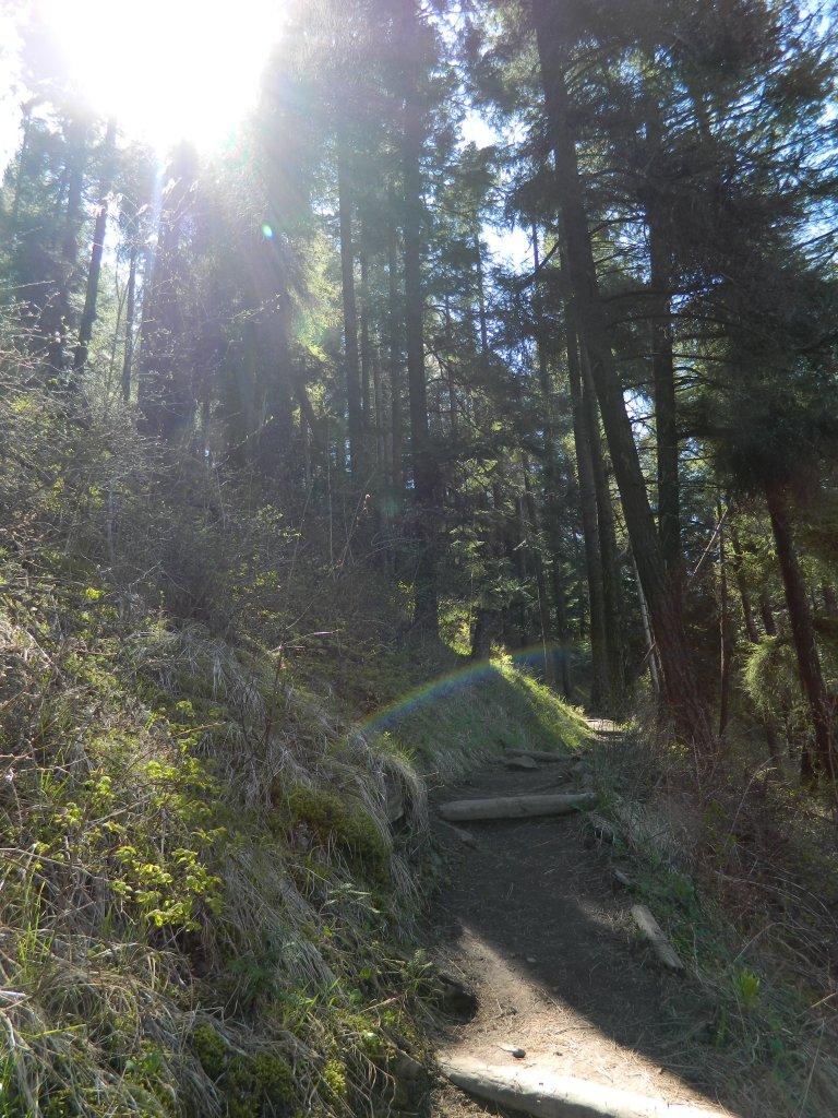 Kamiah Butte April 296