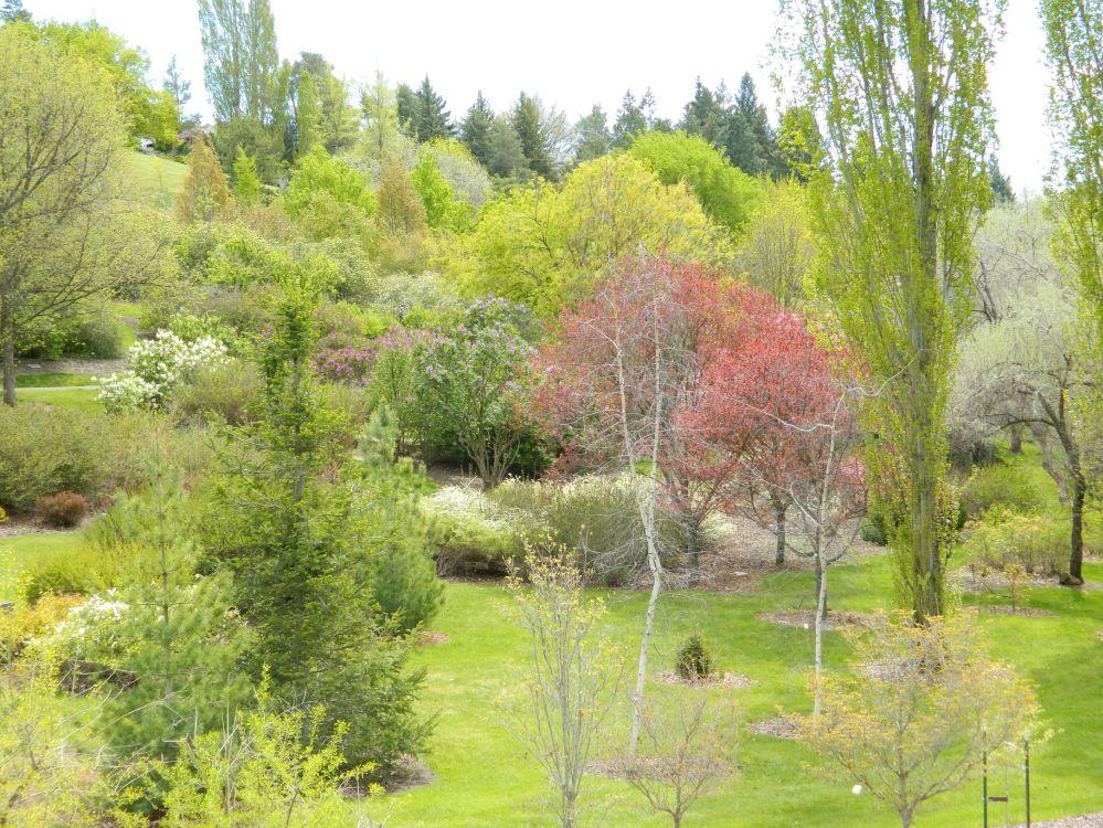Spring April 2015 232